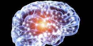 Un estudio demuestra que detener la rutina de ejercicios disminuye el flujo sanguíneo cerebral