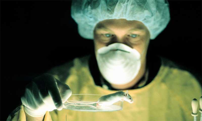 microbiana_experimentos
