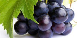 9 asombrosos beneficios de las uvas negras: Desde salud del corazón hasta una piel hermosa