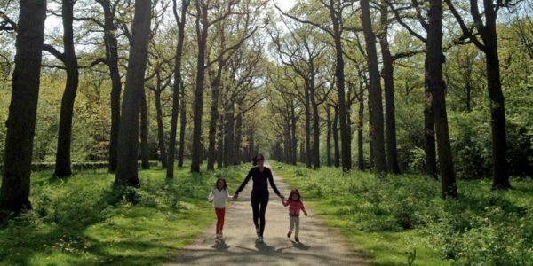 bosque como terapia