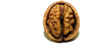 6 frutos secos más saludables para comer entre comidas