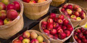 Manzanas: Beneficios para la salud, Datos, Investigación