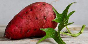 Patatas Dulces: Beneficios para la salud, Datos, Investigación