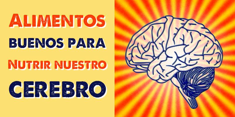 alimentos para cuidar tu cerebro, descubre esta lista.