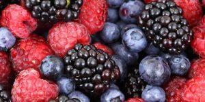 11 razones para añadir Moras a nuestra dieta