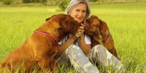 16 trabajos de perros como perros policías, rescatistas entre otros
