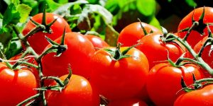 Siete Beneficios del Tomate para nuestra salud