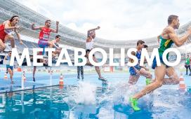 el metabolismo y sus cambios