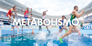 El metabolismo y sus cambios conformen pasan los años