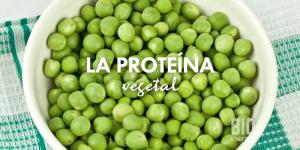 Proteína en los vegetales, opciones para no consumir carne