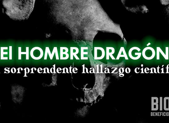 el hombre dragón